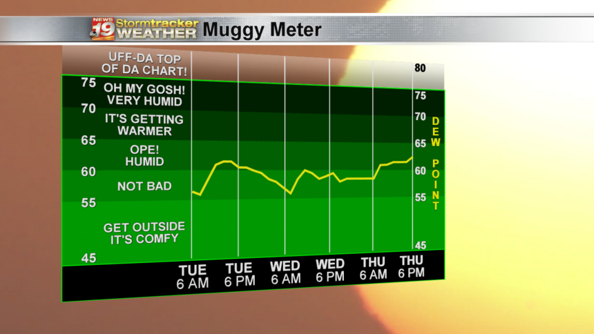 Muggy Meter High Scale - 3 Day