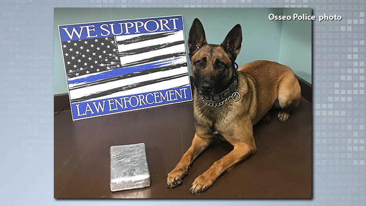 cocaine-osseo pd-K9