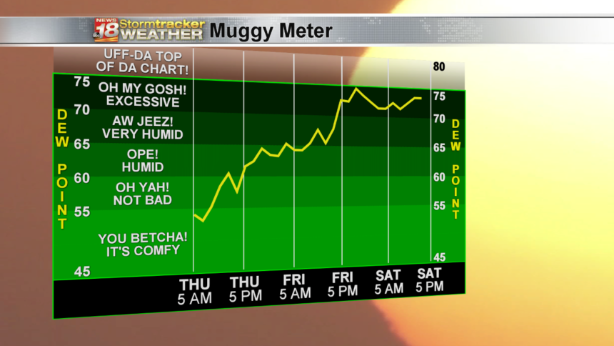 Muggy Meter High Scale NAMNEST - 3 Day Now