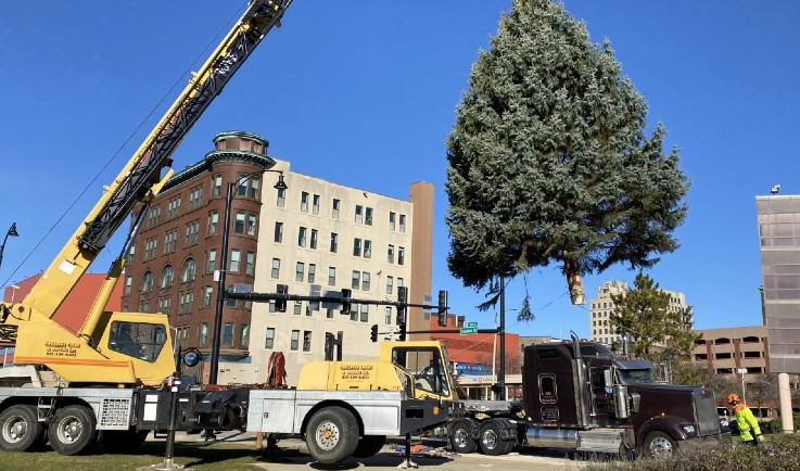 Rockford's Christmas tree arrives at its new home in downtown