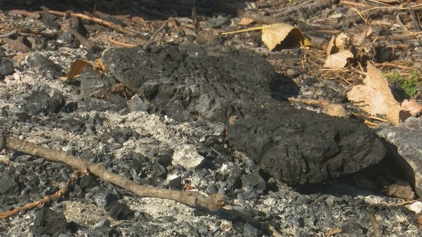 East Peoria, Washington pausing open burning Saturday during NWS-issued Red Flag Warning