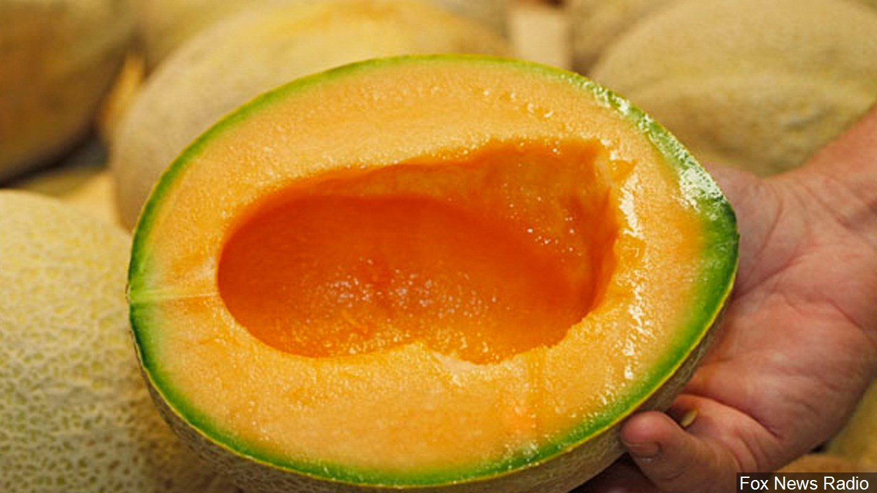 Cantaloupe Recall 2020 : See 248 unbiased reviews of cantaloupe, rated 4 of 5 on tripadvisor and ranked #244 of 5,239 restaurants in kuala lumpur.
