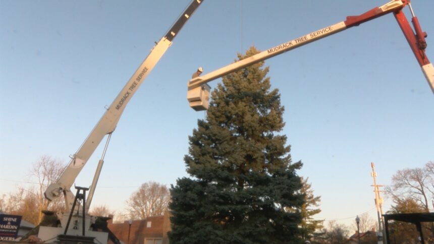 CHRISTMAS ON BROADWAY TREE INSTALLED 2020 1
