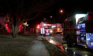 Two cats dead after Spring Street house fire