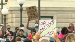 Protest signs
