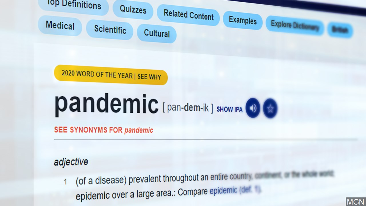 Pandemic definition on dictionary.com