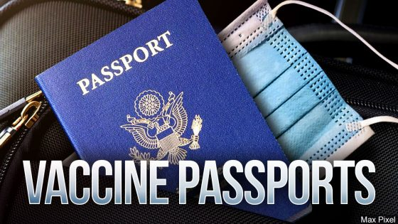 Vaccine Passports graphic