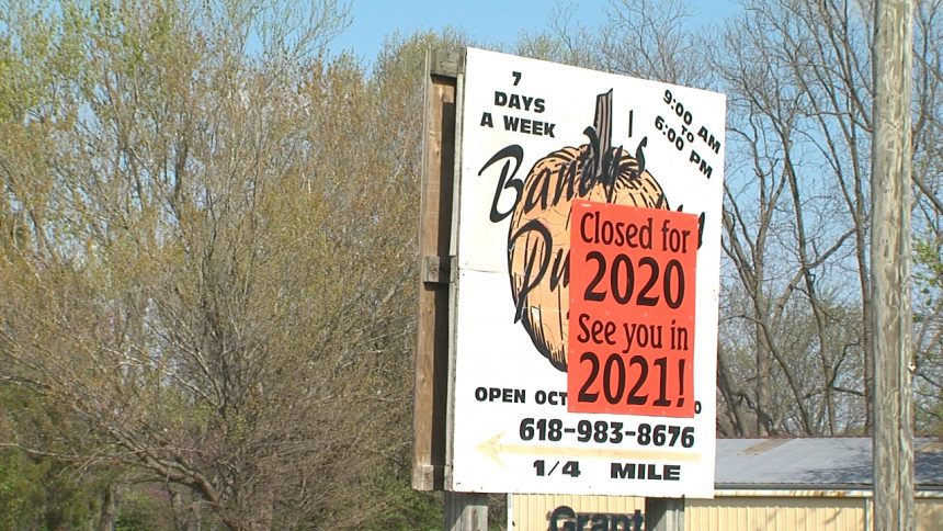 Bandy's Pumpkin Patch Reopens