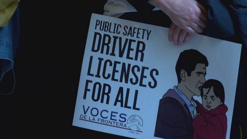 drivers license for all